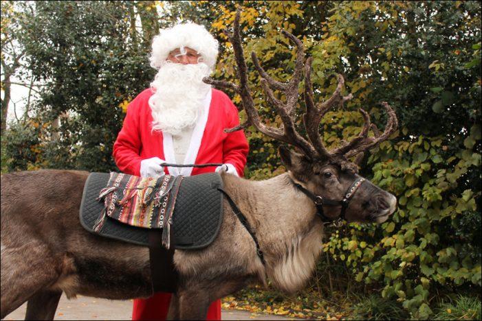 Zoo Duisburg: 1. Advent mit dem Weihnachtsmann und Rentier Rudolph