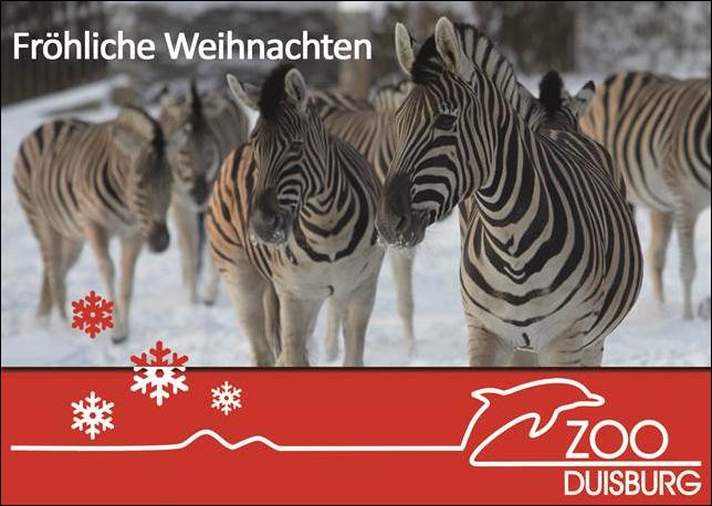 Warten auf das Christkind: Heiligabend im Zoo Duisburg