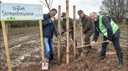 Duisburg-Walsum: Alte Obstsorten für das  Naturschutzgebiet Rheinaue