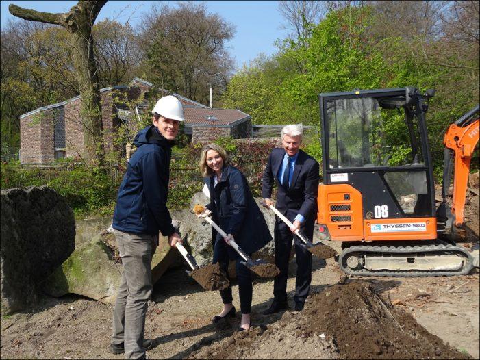 Zoo Duisburg beginnt mit den Bauarbeiten zur Erweiterung der Löwengehege