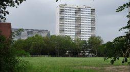 SPD-Bundestagsabgeordnete freuen sich über Millionenförderung für Duisburger Parkanlagen