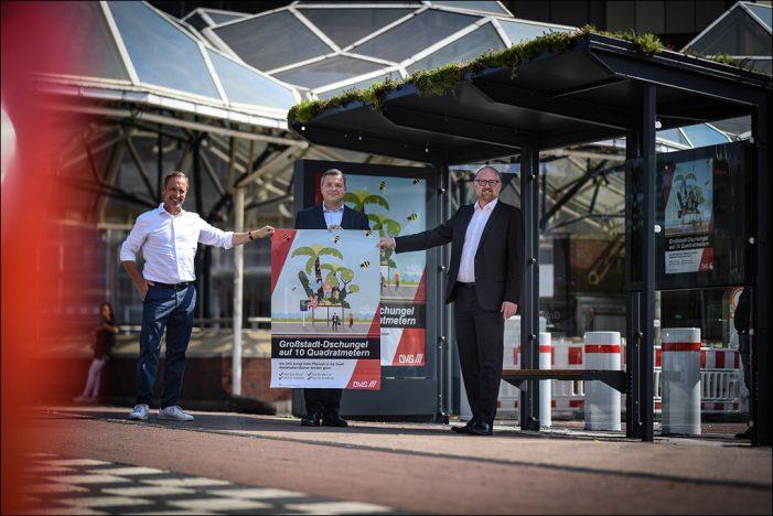 Großstadtdschungel auf 10 Quadratmetern: DVG macht Dächer der Wartehäuschen in Duisburg grün