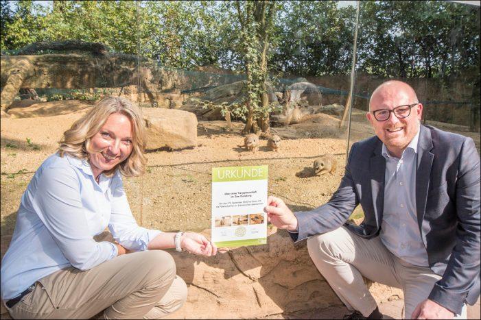 OB Sören Link verlängert Patenschaft für Erdmännchen im Zoo Duisburg