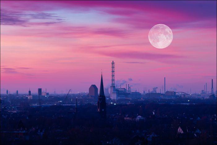 Wirtschaftsstandort Duisburg: Erstes Strukturmonitoring veröffentlicht
