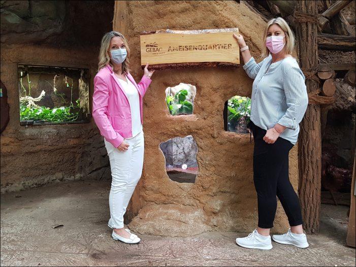 Das GEBAG-Ameisen-Quartier im Zoo Duisburg ist fertiggestellt