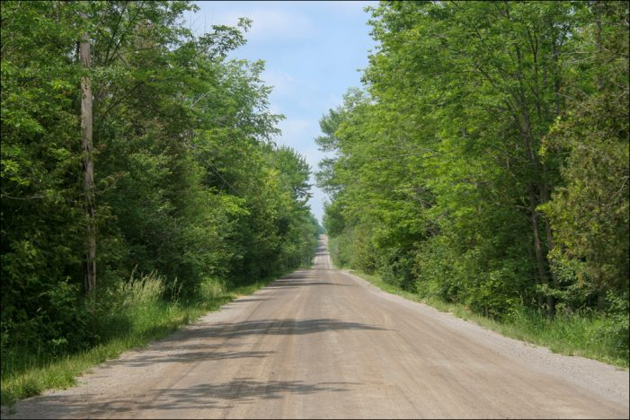 Ausgleichsmaßnahmen in NRW: Rund 3.800 Bäume an Straßen gepflanzt
